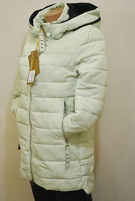 Молодежная демисезонная куртка 717, фото 3