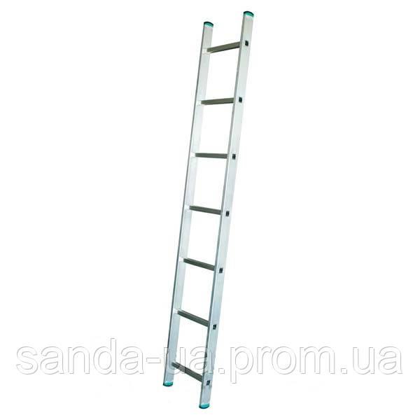 Приставная лестница ITOSS 7109 (9-и ступенчатая)