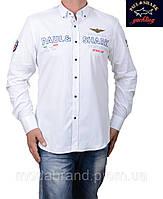 Рубашка мужская белая Paul Shark-1496