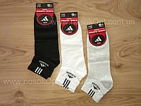 Носки мужские Athletick sports (adidas) Турция  по косточку опт