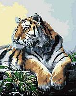Картина по номерам Гордий тигр КН2460