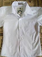 Детская белая школьная рубашка на мальчика с коротким рукавом Турция Размер 104, 110