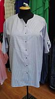 Рубашка в бело-синюю полоску