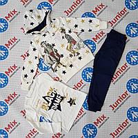 Детские спортивные костюмы для девочек тройка  оптом  BBW