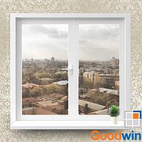 Окно Goodwin