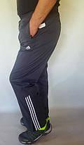 Брюки мужские  спортивные Sport плащевка, фото 2
