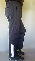 Штани чоловічі спортивні Sport плащівка 5XL, фото 2