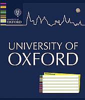 """Тетрадь А5/60л клетка """"OXFORD"""", ЗУ 794402"""
