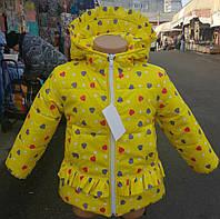 Красивая куртка для девочки на осень 2307