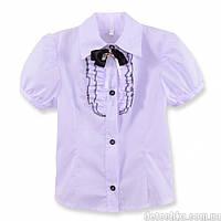 Школьная блуза с красивым бантом 2307/7
