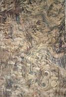 Шпон корня ореха американского ( сорт А)