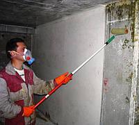 Фасад-актив 1л, антисептик для минеральных поверхностей (концентрат 1:5)