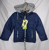 Куртка осень-весна на мальчика ( 80 - 104 )