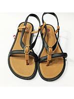 Сандалии женские Grendha Navy sandal Fem Green