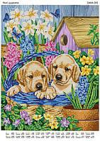 """Схема на ткани для вышивки бисером """"Милые щенки"""" 393"""