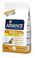 Advance (Эдванс) Cat Adult Chiсken & Rice (1,5) кг корм для взрослых котов с курицей