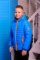 Куртка для мальчика короткая демисезонная синяя на молнии с капюшоном
