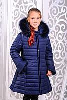 Куртка зимняя для девочки длинная синяя на молнии с капюшоном и мехом енота