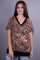 Дениз. Батальная блуза больших размеров. Леопард. только 52,54