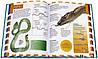 Какаие бывают детские энциклопедии?