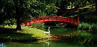 Панорамная картина Китайский мостик