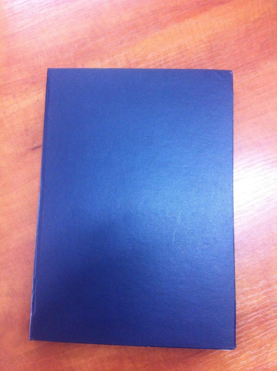 Книга обліку, клітинка, ТП, бумвініл., 500 арк.офс.