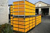 Ящик для перевозки птицы Piedmont, фото 3