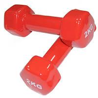 Гантели для фитнеса по 2 кг