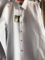 """Детская рубашка для мальчика, белая """"Wanex"""""""
