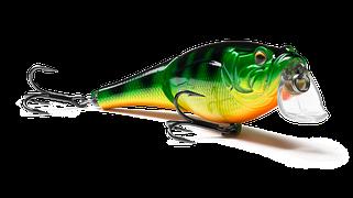 Cranckee Bass Joint 80 (SH-003AJ)