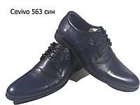 Туфли мужские классические  натуральная кожа синие на шнуровке  (563 ск)