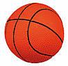 Мяч Trixie Basketball для собак латексный, с пищалкой, 18 см