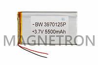 Аккумулятор литий-полимерный BW 3970125P 3,7V 5500 mAh 68x120mm