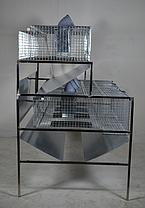Клетка для Кроликов до 20 голов, фото 3