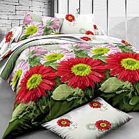 Комплект постельного белья полуторный 150*220 хлопок (7677) TM KRISPOL Украина