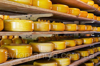 Латексное покрытие для сыров  1л