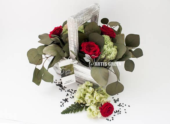 """Эко-корзинки из стабилизированных роз и растений """"Artis Green"""", фото 2"""