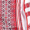 Костюмчик тройка - вышиванка для девочки от 2 до 10 лет, фото 3