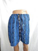 Мужские шорты, LeNata клетка 002