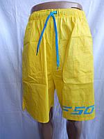 Мужские шорты, пляжные F50 005( смотрите фото)
