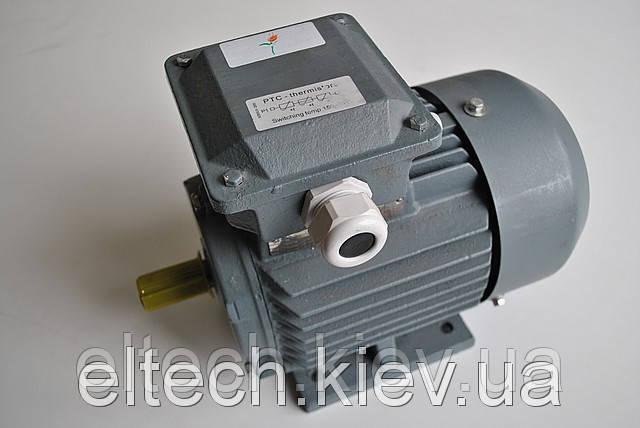 5.5кВт/1000 об/мин, лапы. 13AA-132М-6-В3. Электродвигатель асинхронный Lammers