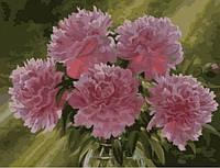 Картина по номерам Розовые пионы в вазе КН1119