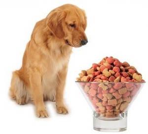Корми для собак на вагу за найкращими цінами