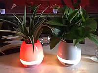 Smart Music Flowerpot, фото 1