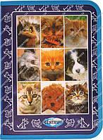 Папка для тетрадей «Pets»