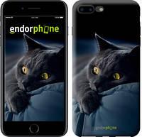"Чехол на iPhone 7 Plus Дымчатый кот ""825c-337-4848"""