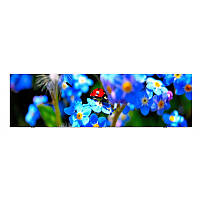 Панель под ванную  I-screen Ladybug