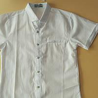 Рубашка школьная для мальчиков (122-140)