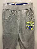 Детские спортивные брюки на мальчика 110,116 см, фото 2