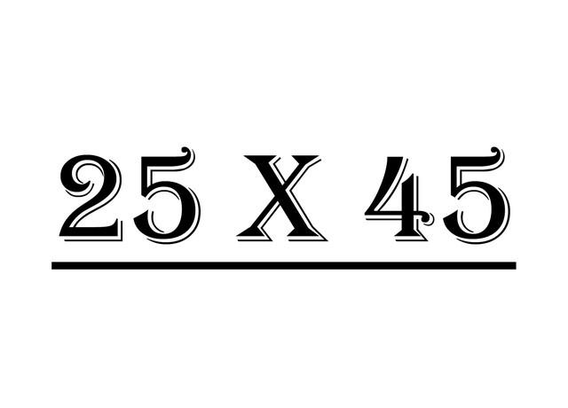 Серия 25 х 45